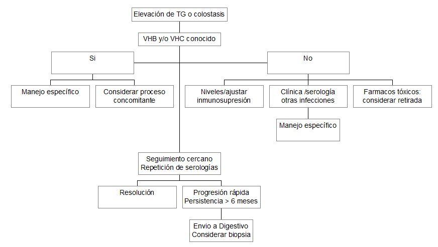Manejo de las alteraciones enzimáticas hepáticas