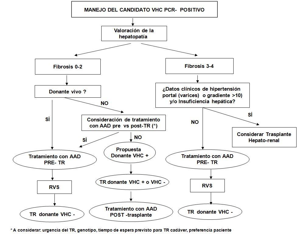 Manejo del candidato VHC PCR-positivo