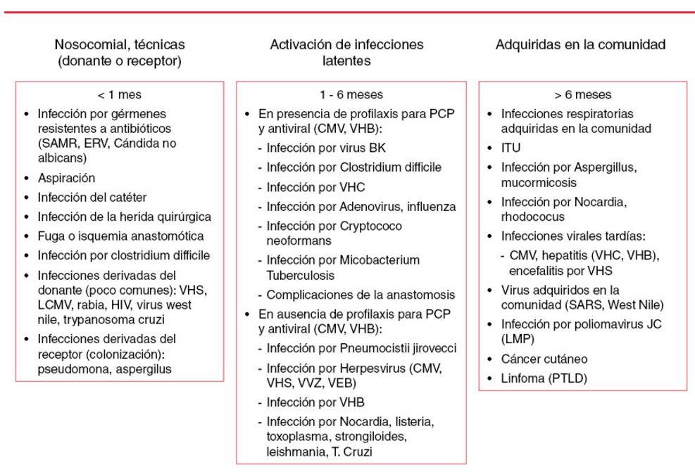 Presentación de las infecciones de acuerdo al momento después del trasplante