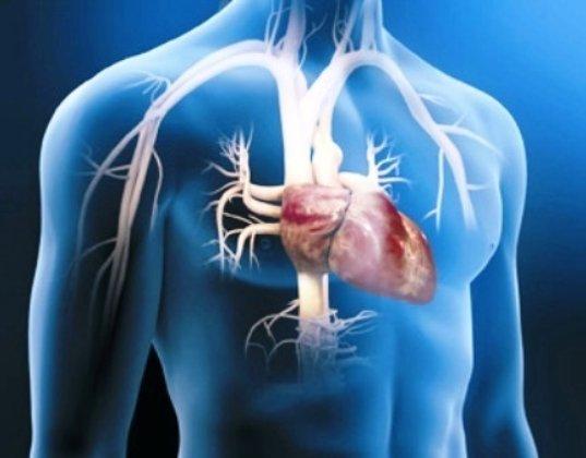 factores de riesgo para la instauración de enfermedades cardiovasculares