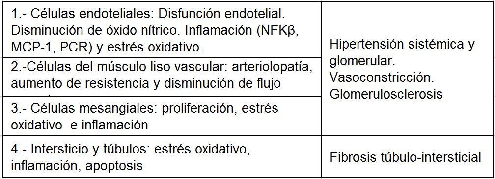 prevención de la nefrolitiasis por ácido úrico de la diabetes